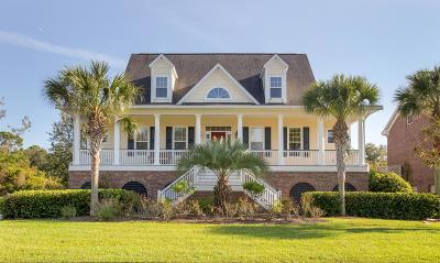 Johns Island Single Family Home For Sale: 4256 Haulover Drive