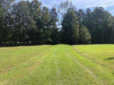 Residential Lots & Land For Sale: 239 Belfast Avenue