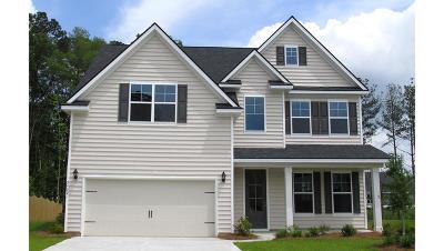 Single Family Home For Sale: 617 Kilarney Road