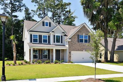 Summerville Single Family Home For Sale: 705 Kilarney Road