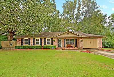 Summerville Single Family Home For Sale: 102 Eliza Lane