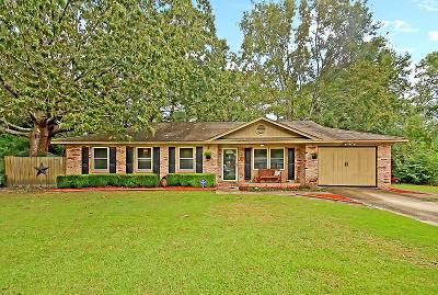 Summerville Single Family Home For Sale: 102 Eliza Lane