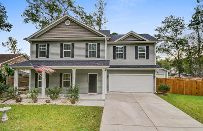 Summerville Single Family Home For Sale: 123 Swan Drive