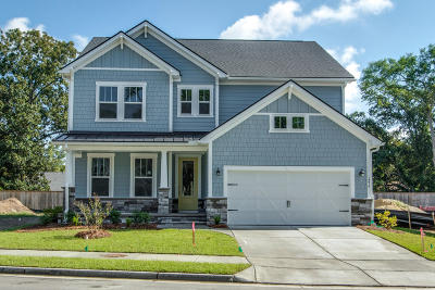 Mount Pleasant SC Single Family Home For Sale: $540,990