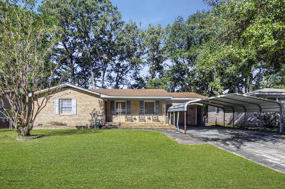 Charleston Single Family Home For Sale: 821 Hitching Post Road