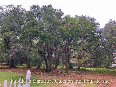 Edisto Island SC Residential Lots & Land For Sale: $115,000
