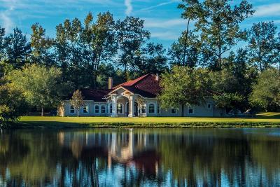 Single Family Home For Sale: 9865 Jacksonboro Road