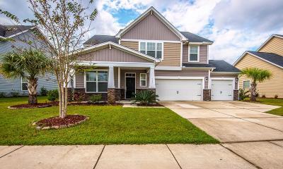 Summerville Single Family Home For Sale: 217 Daybreak Boulevard