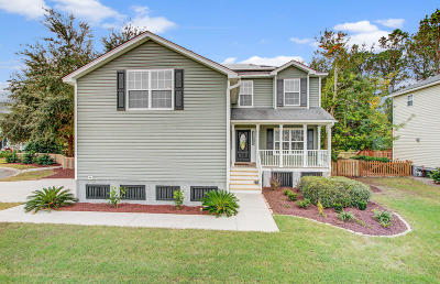 James Island Single Family Home For Sale: 1063 Clearspring Drive