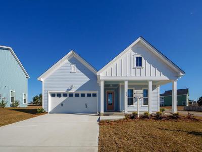 Moncks Corner Single Family Home For Sale: 550 Pendleton Drive