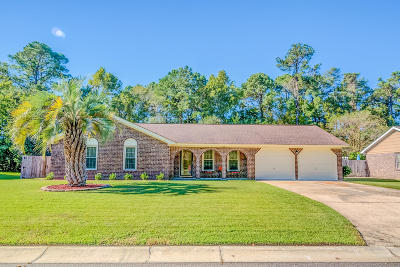 North Charleston Single Family Home Contingent: 8087 Long Shadow Lane