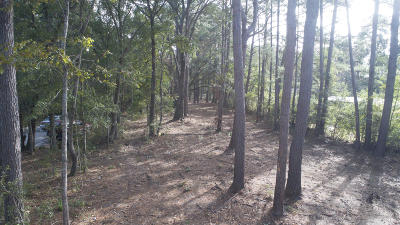 Johns Island Residential Lots & Land For Sale: Brownswood Road
