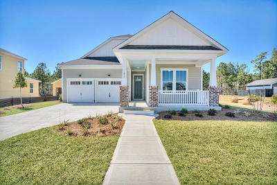 Summerville Single Family Home For Sale: 411 Ashby Street