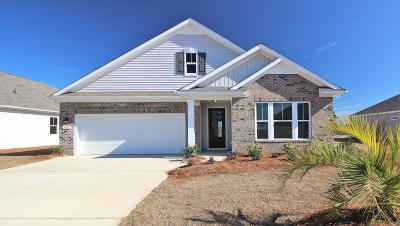 Dorchester County Single Family Home For Sale: 526 Kilarney Road