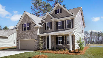 Dorchester County Single Family Home For Sale: 705 Kilarney Road