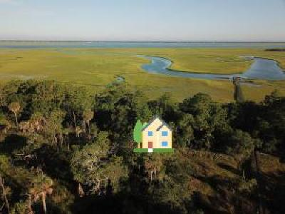 Dewees Island Residential Lots & Land For Sale: 266 Old House Lane Lot 120