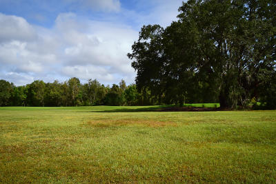 Johns Island Residential Lots & Land For Sale: 4458 Hope Plantation Drive