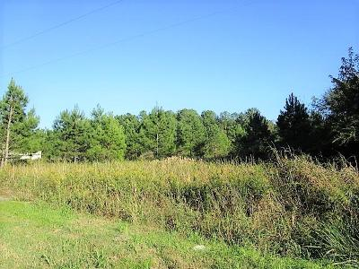 Holly Hill Residential Lots & Land For Sale: 3.5 Acres, Hwy 453 (Gardner) Boulevard