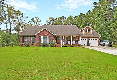 Moncks Corner Single Family Home For Sale: 2013 Albert Storm Ave