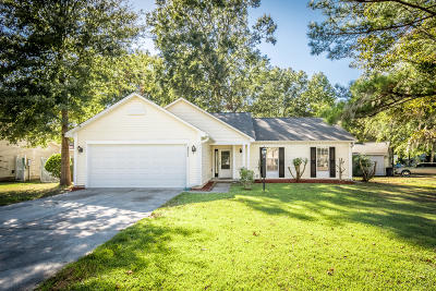 Charleston Single Family Home For Sale: 8462 Scotts Mill Drive Drive