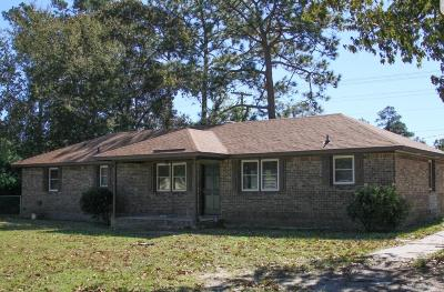 Walterboro Single Family Home For Sale: 565 Estates Drive