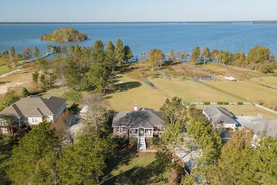 Single Family Home For Sale: 2046 W Lake Shore Drive