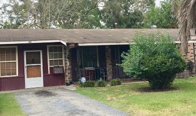 Goose Creek Single Family Home Contingent: 22 Plainfield Avenue
