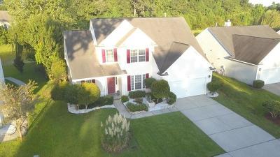 Grand Oaks Plantation Single Family Home For Sale: 159 Cabrill Drive