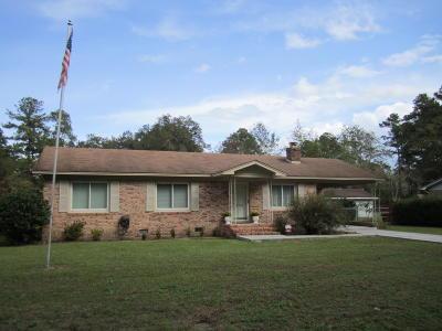 Walterboro Single Family Home For Sale: 890 Dandridge Road