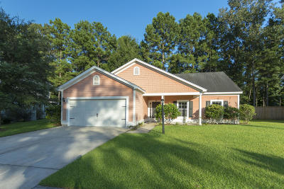 North Charleston Single Family Home For Sale: 8518 Sentry Circle