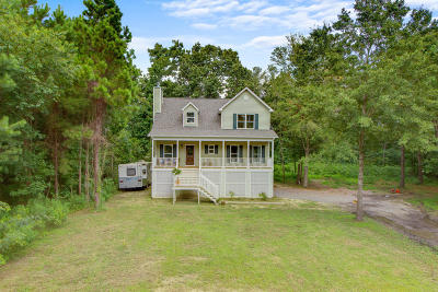 Charleston County Single Family Home For Sale: 633 Daniel Whaley Drive