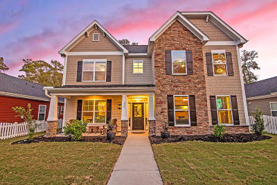 Single Family Home For Sale: 209 Comiskey Park Circle