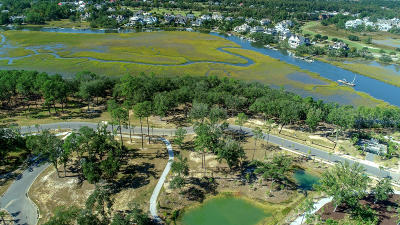 Berkeley County, Charleston County Residential Lots & Land For Sale: 142 Captains Island Drive