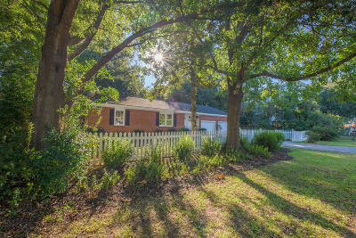 Mount Pleasant Single Family Home For Sale: 1128 Carter Avenue