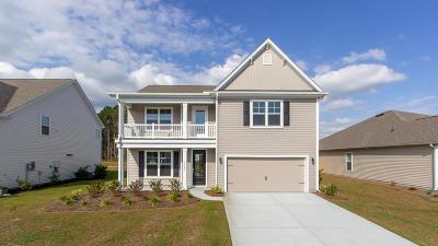 Johns Island Single Family Home For Sale: 1221 Hammrick Lane
