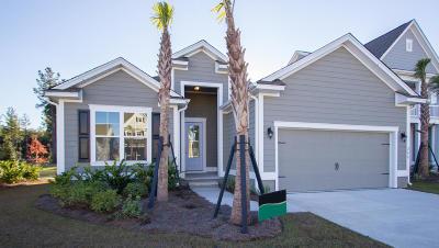 Single Family Home For Sale: 209 Seaworthy Street