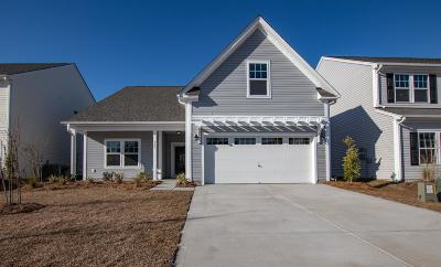 Summerville Single Family Home For Sale: 369 Dunlin Drive
