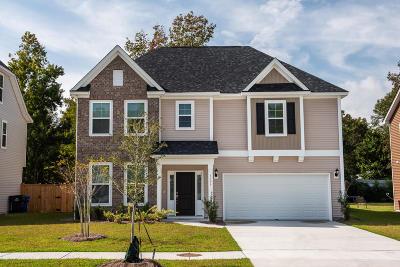 Johns Island Single Family Home For Sale: 1598 Fishbone Drive