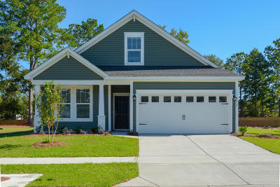 Johns Island Single Family Home For Sale: 3235 Timberline Drive