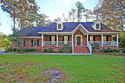 Summerville Single Family Home For Sale: 113 Caveson Drive