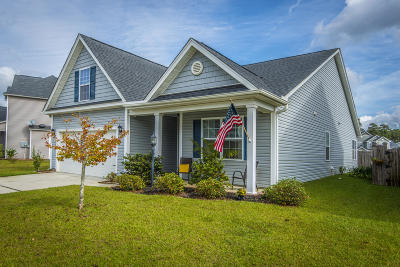 Single Family Home For Sale: 8192 Little Sydneys Way