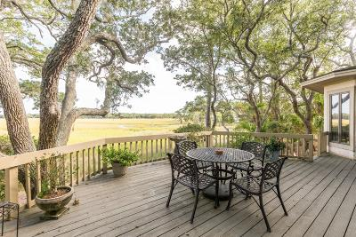Berkeley County, Charleston County, Colleton County, Dorchester County Single Family Home For Sale: 2295 Marsh Hen Drive