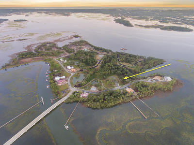 Berkeley County, Charleston County Residential Lots & Land For Sale: 207 Fell Point