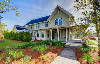 Summerville Single Family Home For Sale: 318 Scholar Way