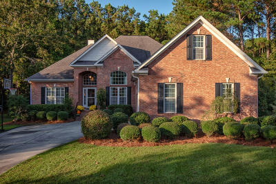 Mount Pleasant Single Family Home For Sale: 2788 Waterpointe Circle