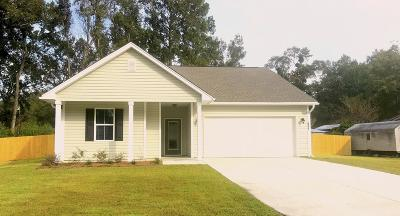 Single Family Home For Sale: 951 Leonard Drive