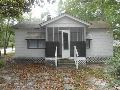 Walterboro Single Family Home For Sale: 114 Durham Street
