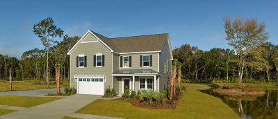 Johns Island Single Family Home For Sale: 1205 Lois Allen Drive