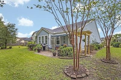 Charleston Single Family Home For Sale: 424 Nelliefield Trail