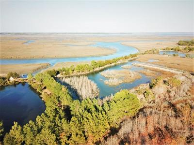 Edisto Island SC Residential Lots & Land For Sale: $1,100,000